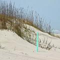Sand And Grass by Deborah Benoit
