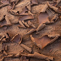 Sand And Mud Curls by Sandra Bronstein