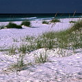 Sand Beach And Grass by Sally Weigand