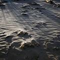 Sand Beach At Sunset by Hideaki Sakurai