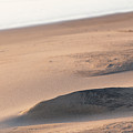 Sand Blade by Digiblocks Photography