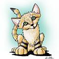Sand Cat by Kim Niles