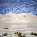Sand Desert Usa by Patrick Boening