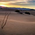 Sand Dune by Liang Li