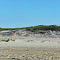 Sand Dune Panorama  by Alida Thorpe