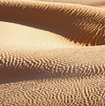 Sand Dunes 2 by Delphimages Photo Creations