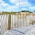 Sand Dunes At Grayton Beach # 2 by Mel Steinhauer