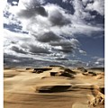 Sand Dunes  Hat Head National Park Nsw by Paul Dal Sasso