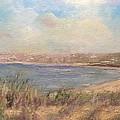 Sand Dunes, St. Ouens Bay by Mick Ruellan