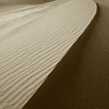 Sand Dunes by Steve Williams