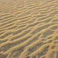 Sand Patterns by Don Keisling