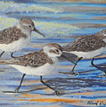 Sand Pipers by Edward Walsh