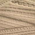 Sand Tracks by Torie Beck