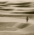Sand Walker by Mark Lemon