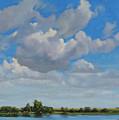Sandbar Slough July Skies by Bruce Morrison