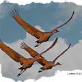 Sandhill Cranes 3 by Larry Linton