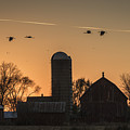 Sandhill Cranes Flying Into The Sunset 2015-1  by Thomas Young