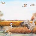 Sandhill Cranes-jp3159 by Jean Plout