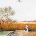 Sandhill Cranes-jp3160 by Jean Plout