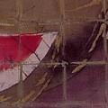 Sandia Detail by Robert D McBain