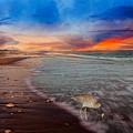 Sandpiper Sunrise by Betsy Knapp