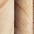 Sandstone Columns by Janet Fikar