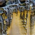 Sandstone Detail Syd01 by Werner Padarin