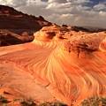 Sandstone Dragon Portrait View by Adam Jewell