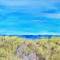 Sandy Dunes by Regina Valluzzi