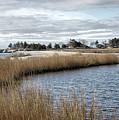 Sandy Hook New Jersey by Eleanor Bortnick