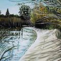 Sandy Reeds by Elizabeth Robinette Tyndall