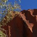 Sandy Rock by Nigel Photogarphy