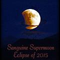 Sanguine Supermoon Eclipse 2015 by Dale Jackson