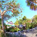 Sanibel And Captiva Visitor Center Iv by Tina Baxter