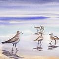 Sanibel Beach And Birds by Ruth Bevan