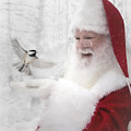 Santa And The Chickadee by Pat Eisenberger