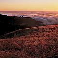 Santa Cruz Mountains At Sunset Ca Usa by Panoramic Images