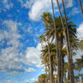 Santa Monica Ca Palisades Park Bluffs Palm Trees by David Zanzinger