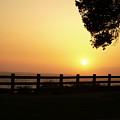 Santa Monica Sunset by Kareem Farooq