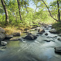 Santa Ysabel Creek In Spring by Alexander Kunz
