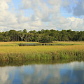 Sapelo Marsh by Barbara Northrup