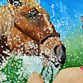 Sara Washes Her Horse by Michael Lee