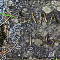 Sarah by Diana Hatcher
