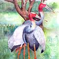 Sarus Cranes by Arline Wagner