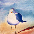 Sassy Seagull by Ruth Bevan