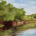 Satilla River by Glenda Cason