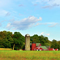 Sauer Farm, Mt. Marion by Nancy De Flon