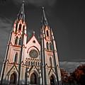 Savanna Georia Church Color Infrared 74 by Rolf Bertram