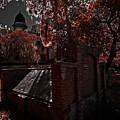 Savanna Georia Colonial Park Cemetery Color Infrared 500 by Rolf Bertram