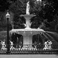 Savannah Fountain by Christopher Scirto
